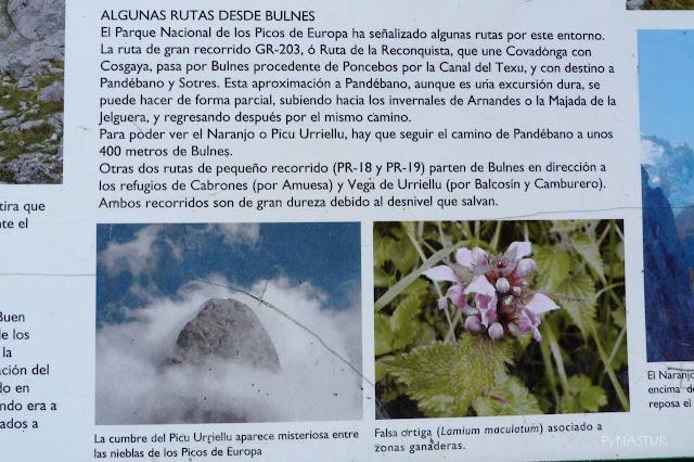 Panel con información sobre rutas por Bulnes