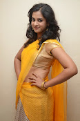 Nanditha raj latest photos in half saree-thumbnail-13