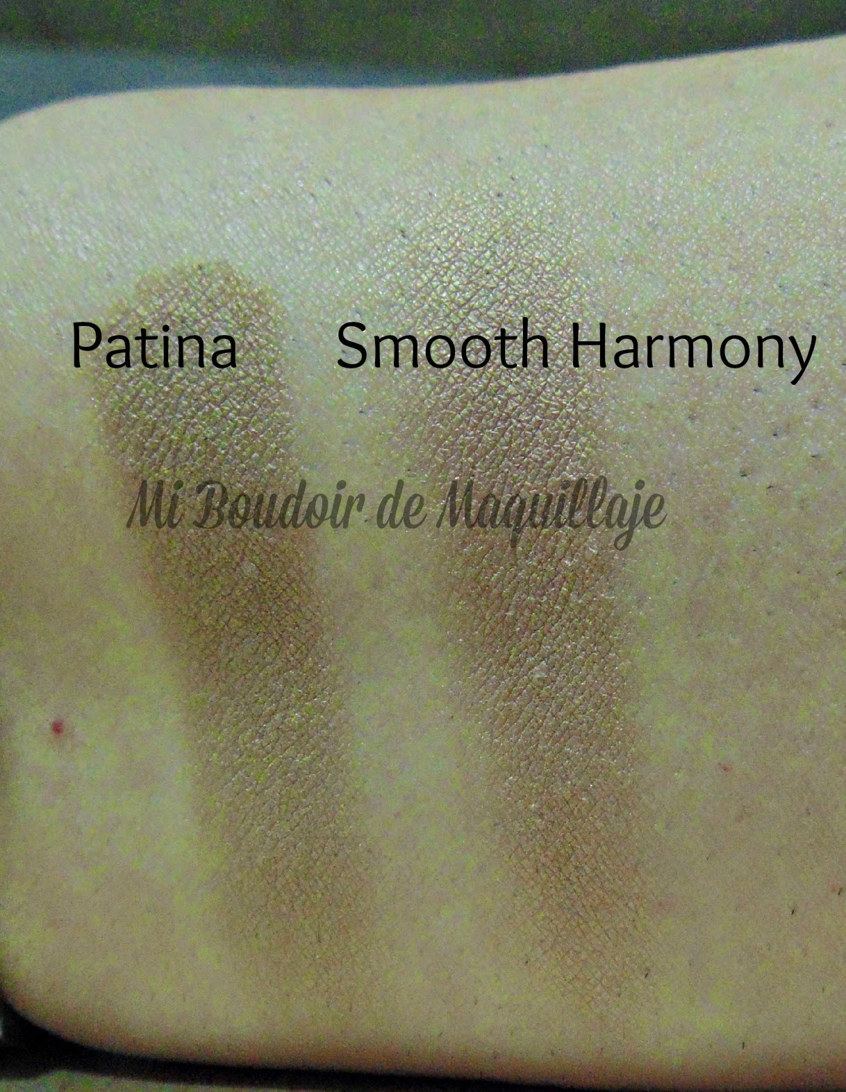 Smooth Harmony Zoeva vs Patina Mac
