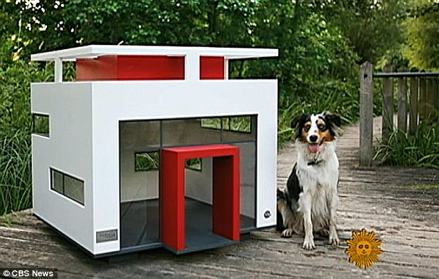 In the doghouse pooch owners treat pets to modern homes for Modern dog house designs