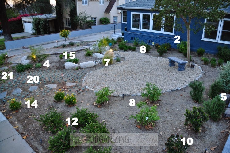 Plant placement in native, drought tolerant front yard :: OrganizingMadeFun.com