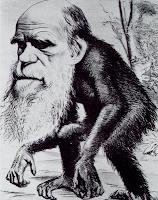 Darwin als Affe