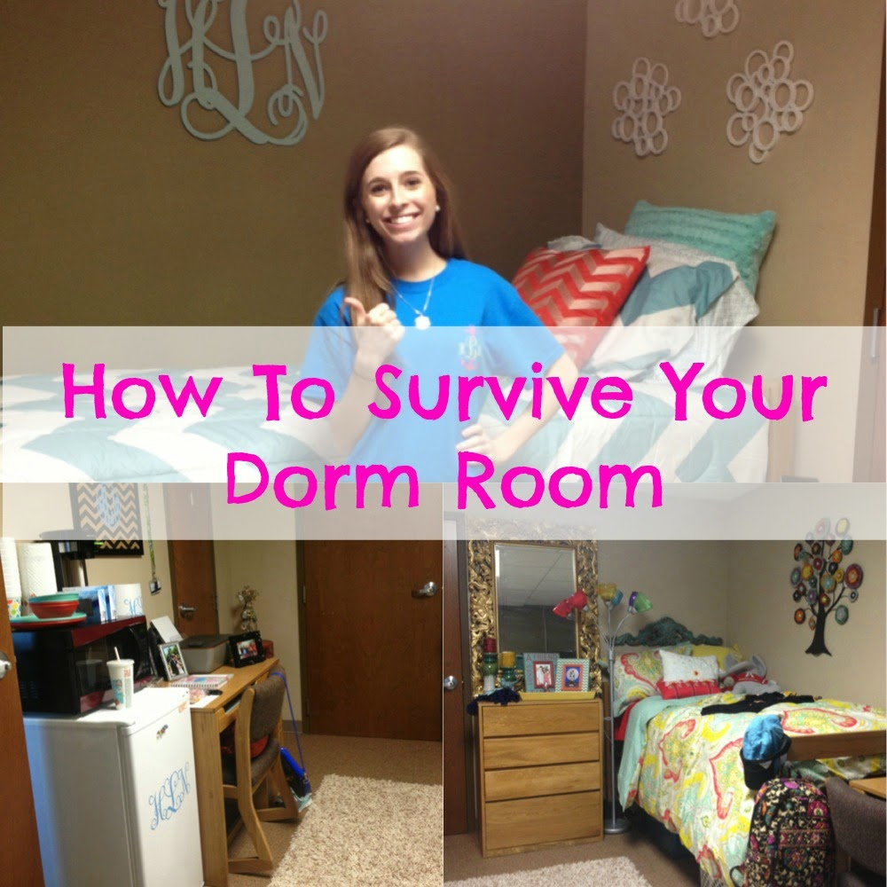 my life as hayden how to survive your dorm room