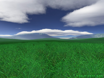 Free Desktop Green fields Background Wallpaper