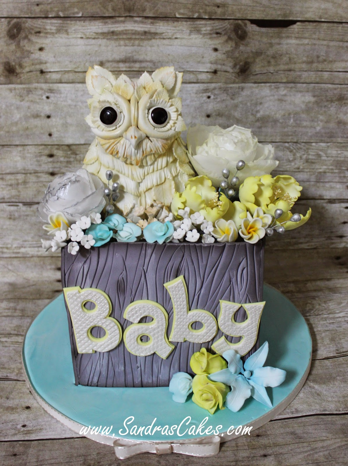 Most Adorable Owl Themed Baby Shower Cake