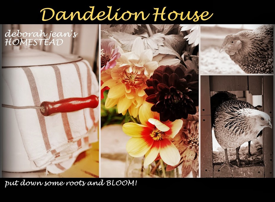deborah jean's DANDELION HOUSE and GARDEN