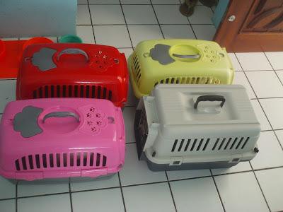 Caixinhas de transporte dos gatinhos da Renata Góes