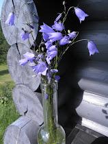Helinää tuulessa :)