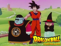 Dragon Ball Z capitulo 205