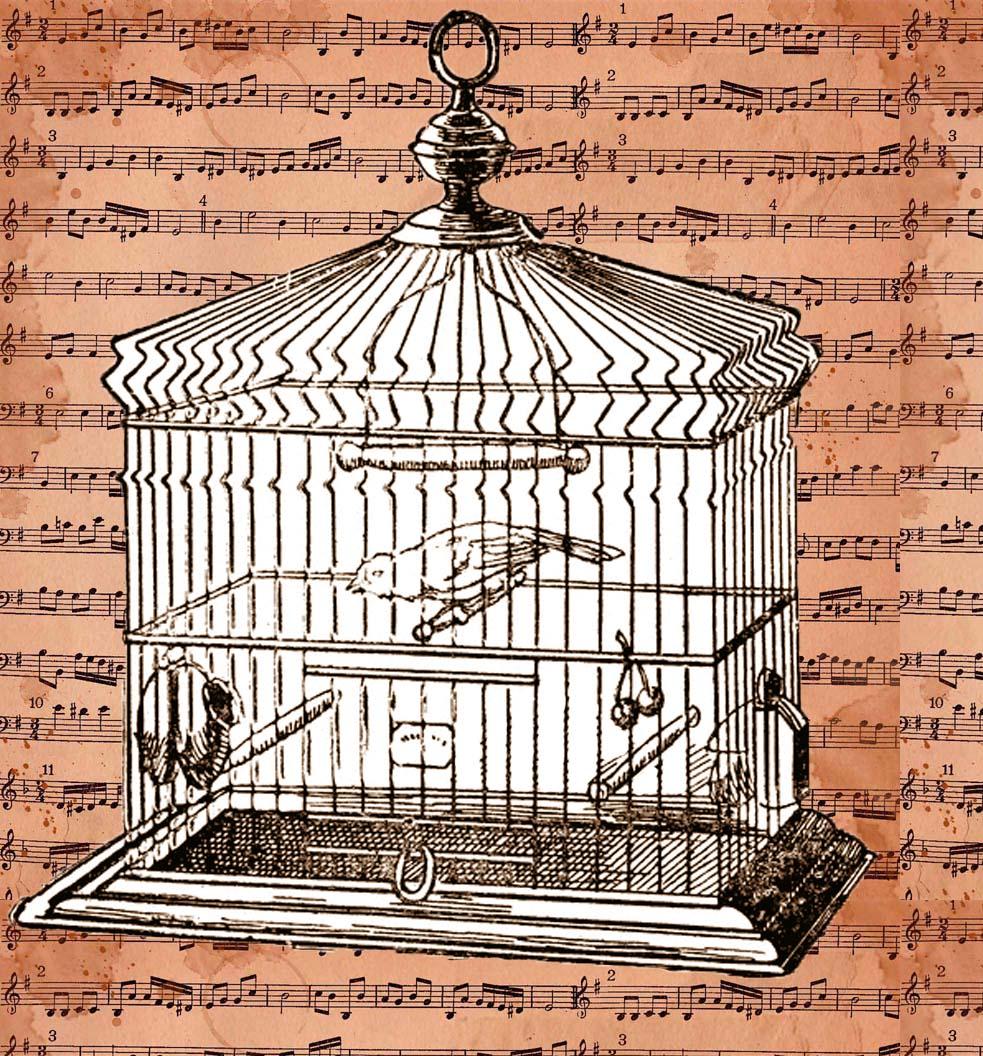 http://3.bp.blogspot.com/-mtKaGA6k3lI/UwWFa8BBoTI/AAAAAAAANp4/o8dwVFTvhOA/s1600/01+free+digital+stamp_printable+-+birdcage_image.jpg