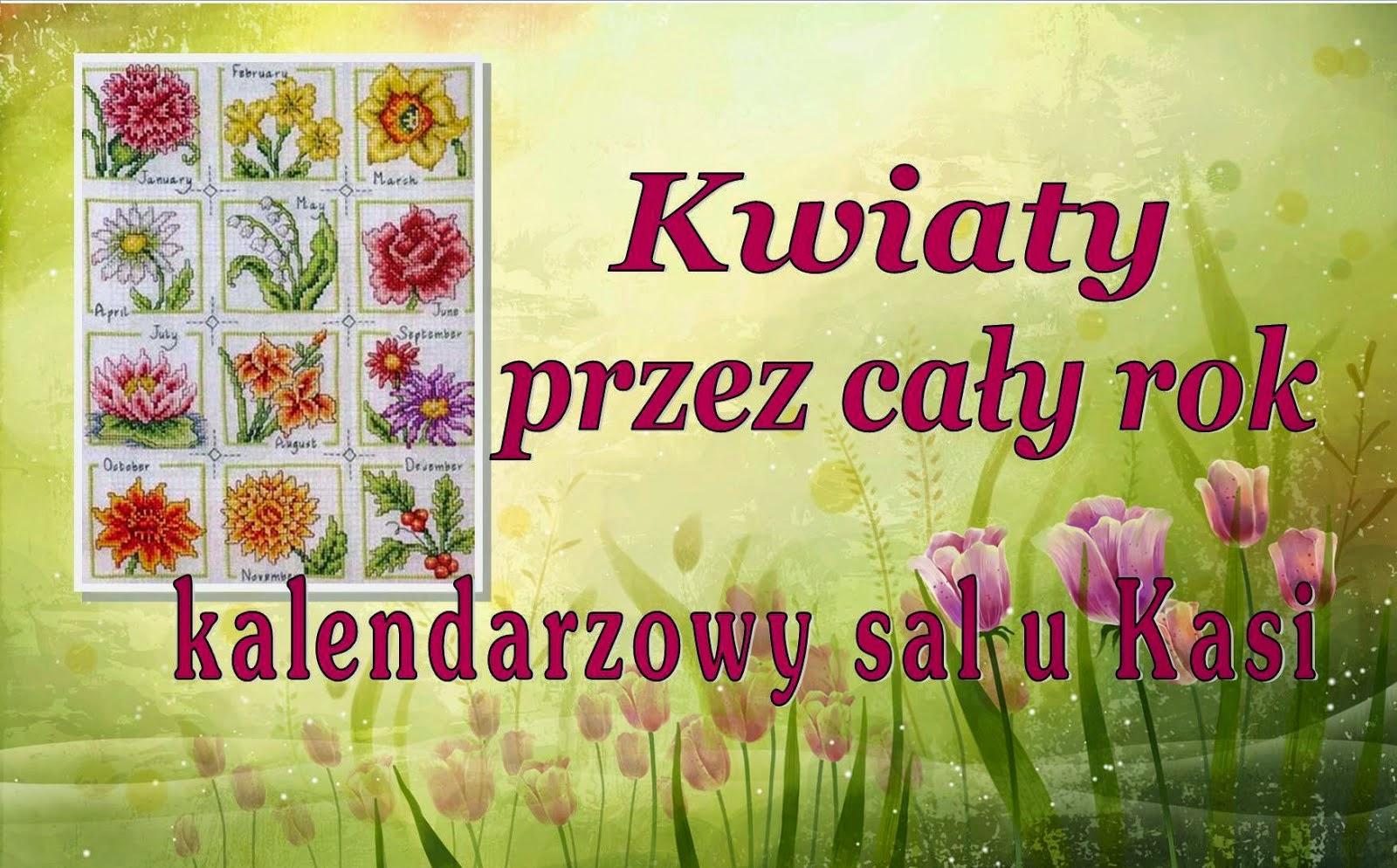 Kwiaty przez cały rok u Kasi