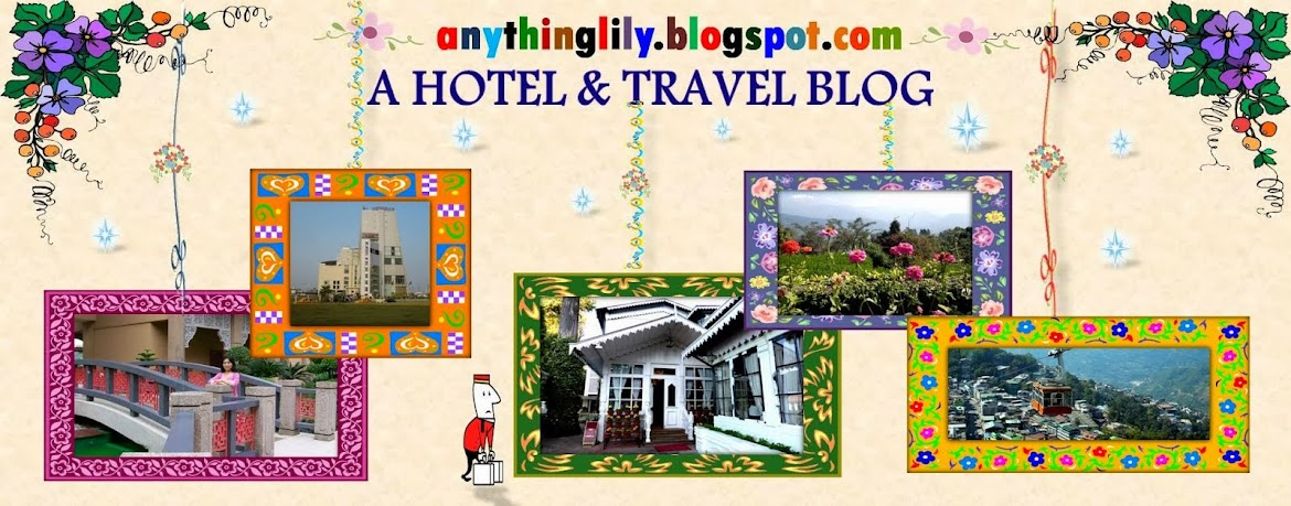 Lily's Hotel and Travel Blog