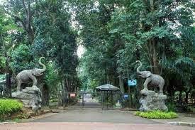 Tempat Wisata Jakarta Kebun Binatang Ragunan