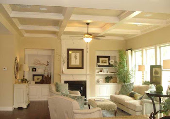 The Preserve At Johns Creek Home
