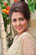 Madhu Shalini sizzling in saree-thumbnail-18