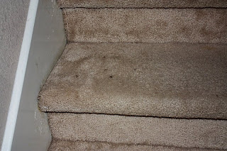 The Hamiltons Ripping The Carpet Off Our Stairs