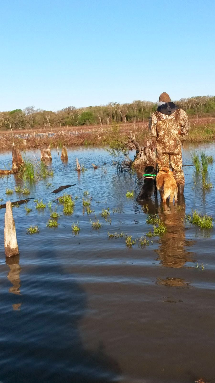 North Texas Guided Duck Hunting