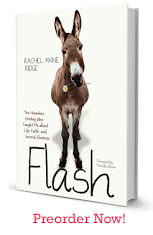 "GET YOUR COPY of ""FLASH"""