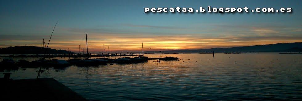 Pescata Blog - Pesca y vivencias en las Rias Baixas