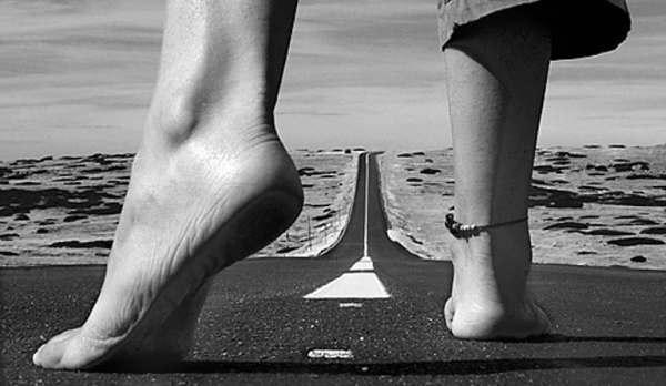 el camino es largo...