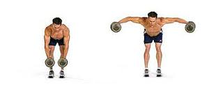 pendukung program pembentukan otot dada