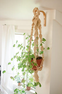 macrame, plant, hanger, basket. craft, mint geranium