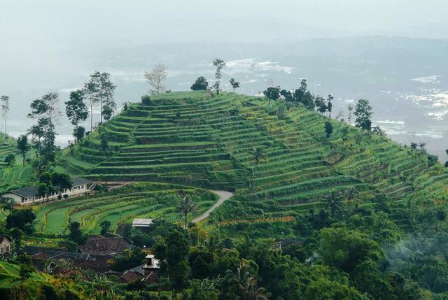 Kawasan Wisata Alam Umbul Sidomukti  Semarang ~ WISATA ALAM
