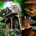 Ecomanía: Hoteles sobre arboles