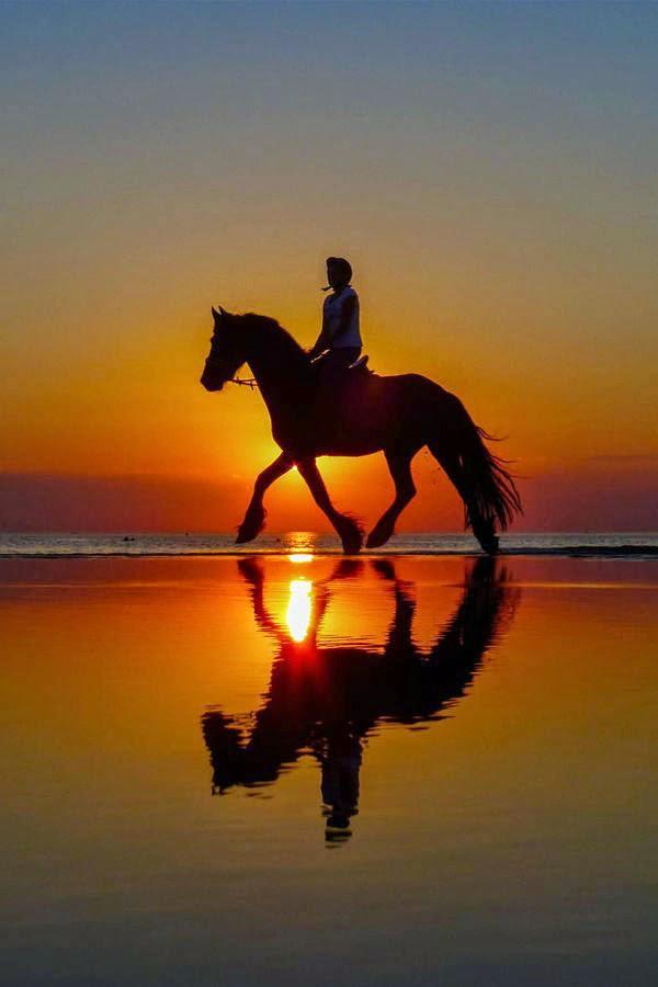 Awesome Sunrise And Su...