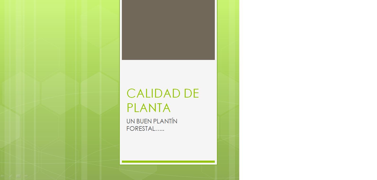 Buenos aires forestal 4 encuentro del ciclo de for Importancia de un vivero