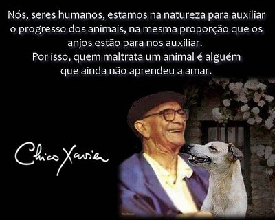 Sábio Chico....