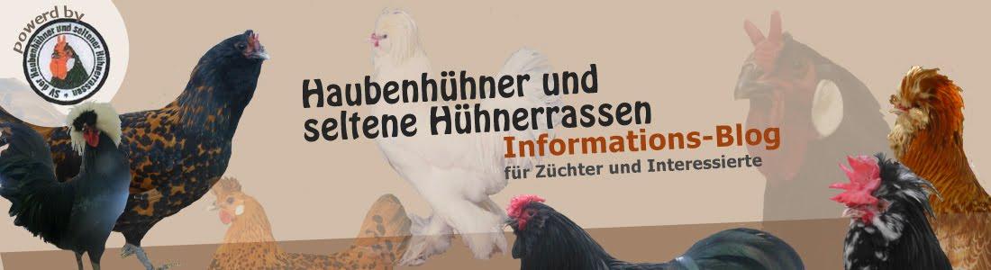 Haubenhühner und seltene Hühnerrassen