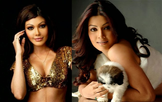Bollywood Actresses before and after they have  had their plastic surgeries done