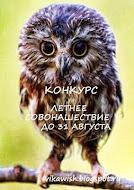 """Конкурс """"Летнее СовоНашествие"""" до 31 августа"""