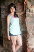 Sheena shahabadi sizzling pics-thumbnail-8