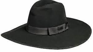 Looks con sombrero Fedora