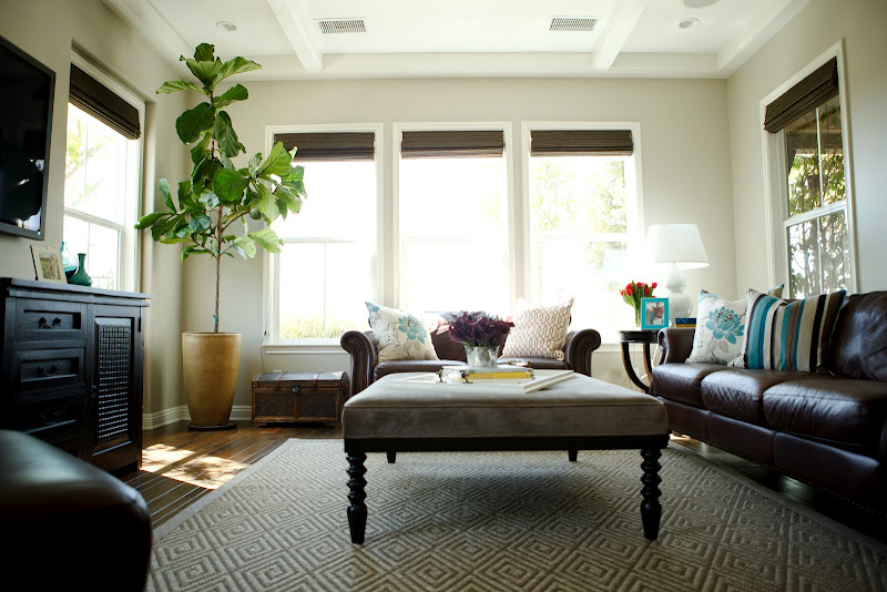 Family Room Decorating Ideas with Brown Leather Sofa