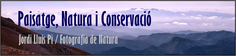 Paisatge i Natura