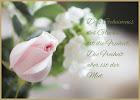 SPRUCHKARTE Rose