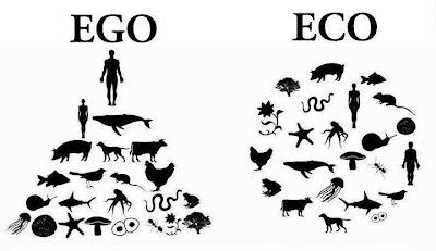 ego-eko-sistem