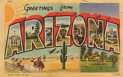 girl scout blog girl scouts arizona cactus pine council