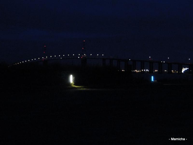 Le pont de Saint-Nazaire Oleron+2013+464