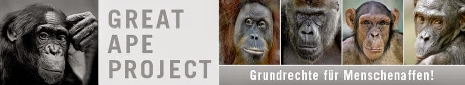 http://www.greatapeproject.de/