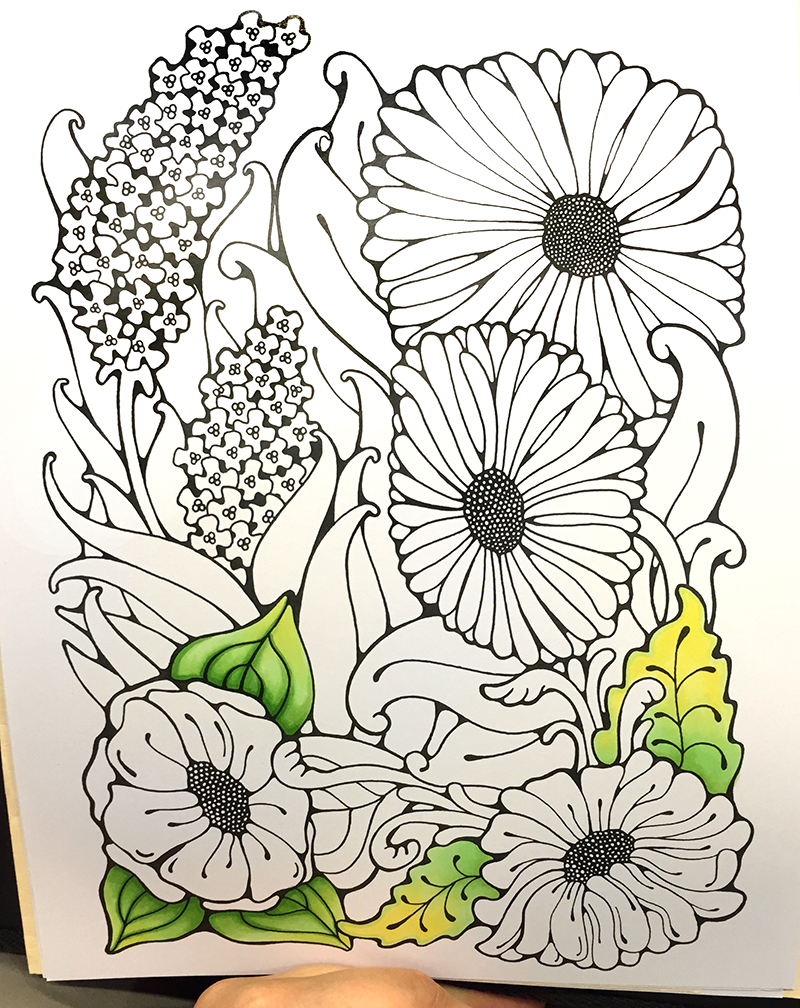 i like markers coloring leaves with extra depth