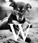 Karen V. Wasylowski's blog
