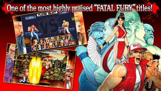 Fetal Fury Special Full Version Pro Free Download
