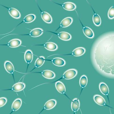 Cir-ciri Sperma Sehat