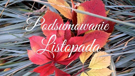 podsumowanie listopada, listopad, liście, nic na poważnie, urodziny, blog, miesiąc na blogu