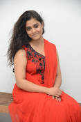 Samatha photos at SSD music launch-thumbnail-8