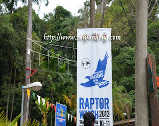 Raptor Watch